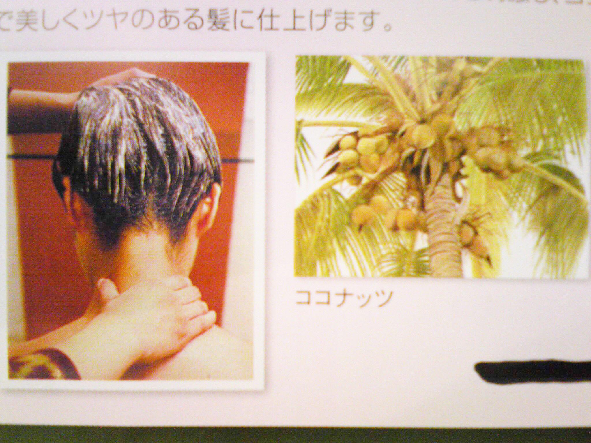 http://luce-hair.net/wp-content/uploads/2011/04/pic1.jpg